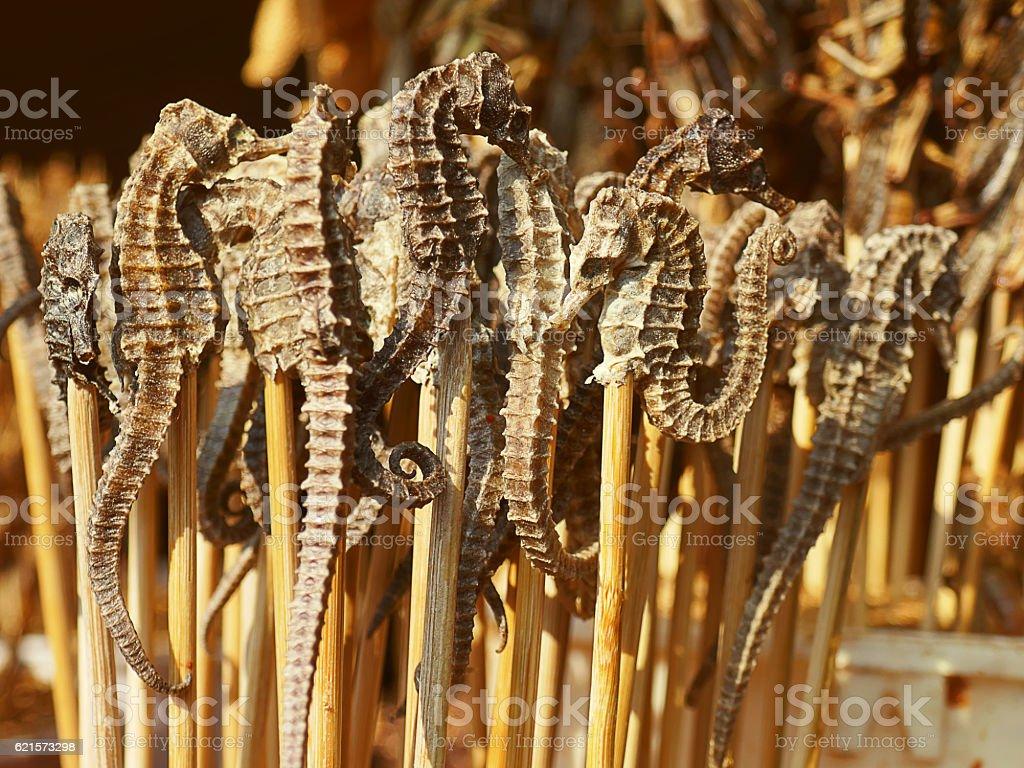 Pieczona smażone owady – zdjęcie