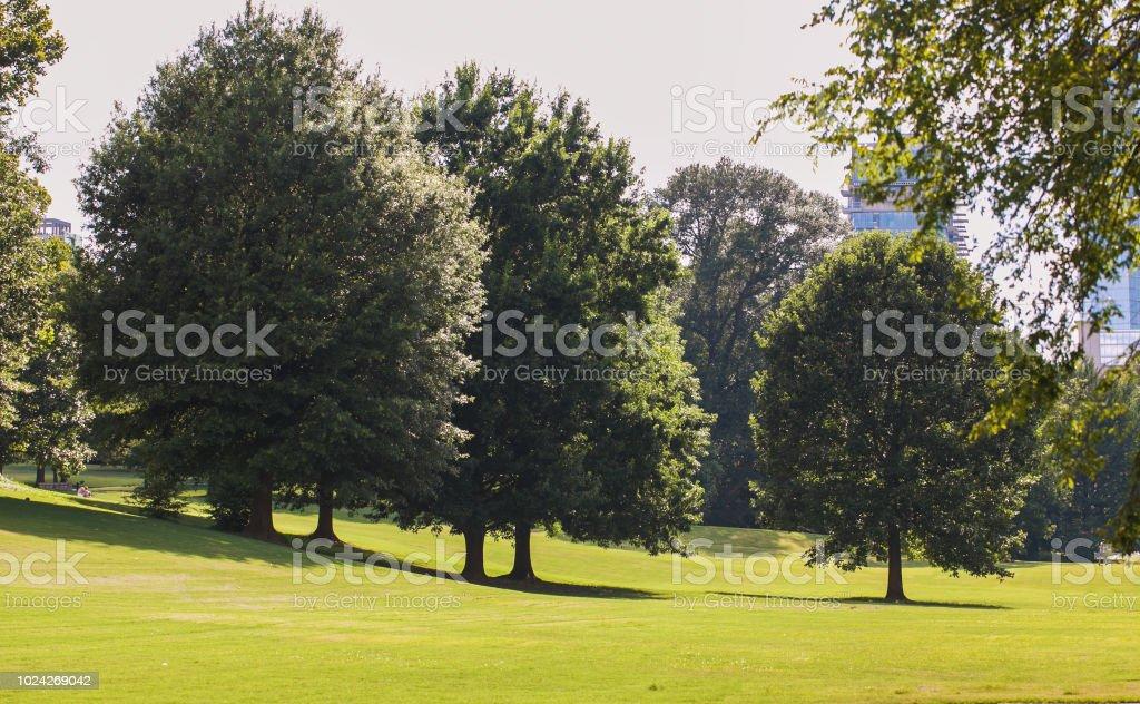 Piedmont Park in Atlanta stock photo