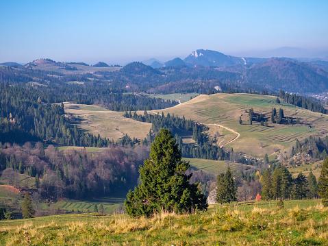 Pieniny Mountains in autumn. Mount Beresnik and Trzy Korony Massif at background. View from Rozdziela Pass.