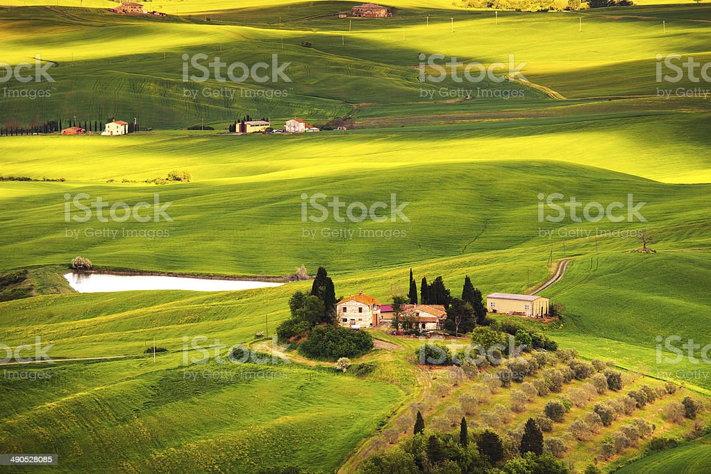 Pienza, rural sunset landscape. Countryside farm and green field royalty-free stock photo