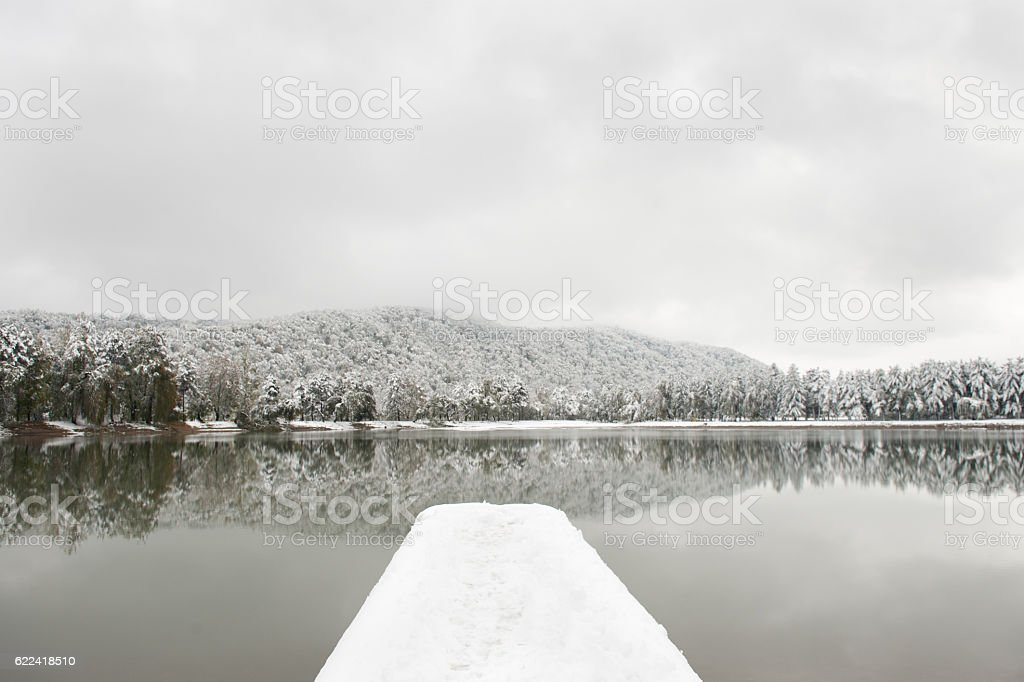 pier covered with snow against backdrop of lake   snow-covered trees stock photo