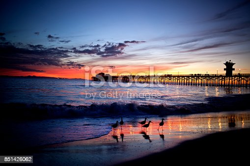 wooden pier sunset with birds