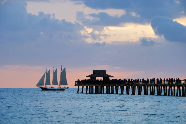 Pier with passing sailboat at dusk  naples florida stock pictures, royalty-free photos & images