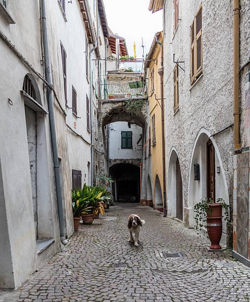 Pieve di Teco (Italia). Vista sulla strada con cane - foto stock