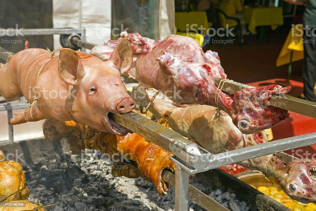 Pig and lamb on the spit royalty-free stock photo