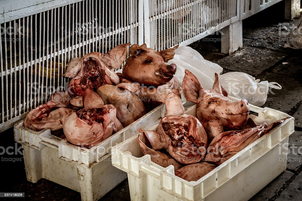 Pig heads outside butcher shop stock photo