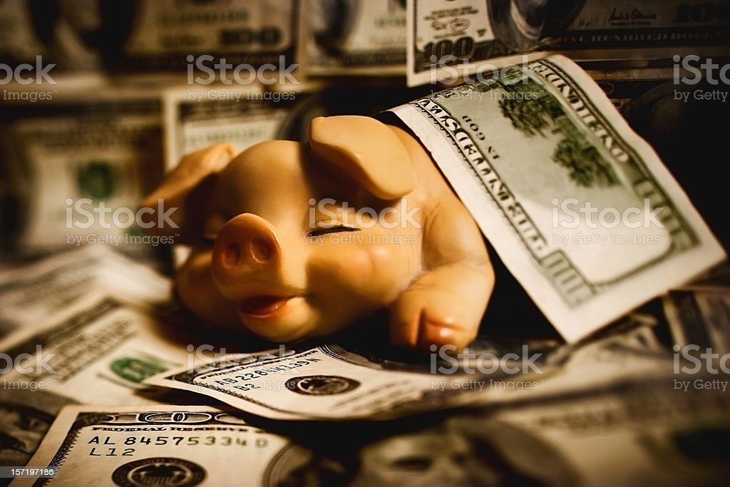 Pig in a Hundred Dollar Bill royalty-free stock photo