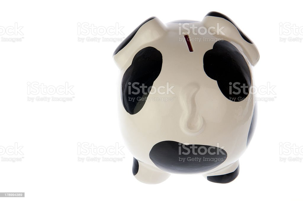 Pig in black white cow print, from backside royalty-free stock photo