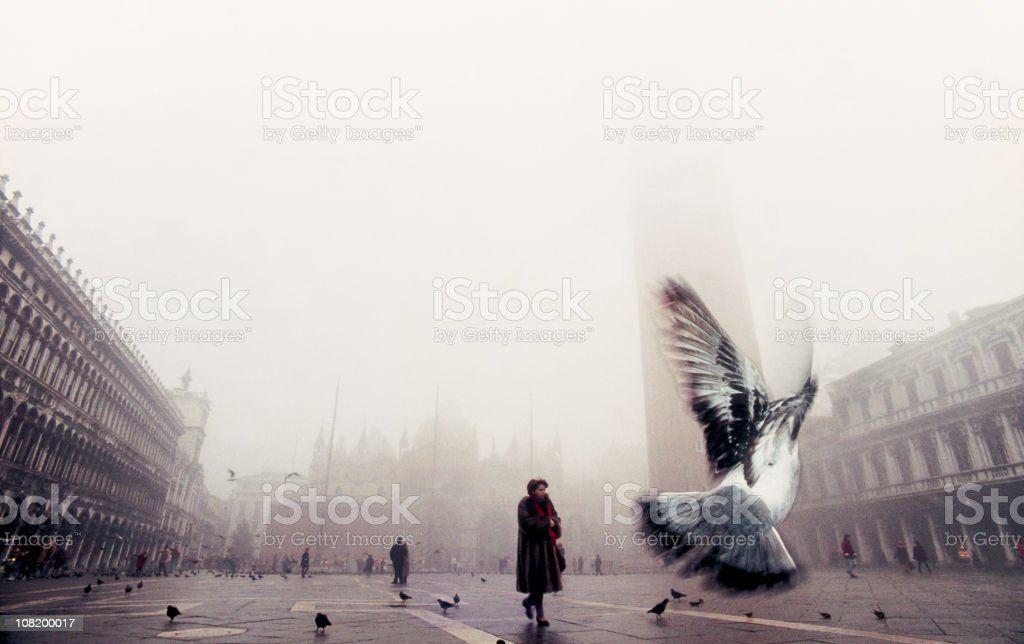 Pigeon flying through St. Mark's Square on a rainy day. royalty-free stock photo