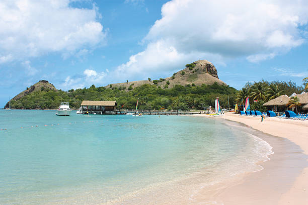 Pigeon Island, St. Lucia View of Pigeon Island in St. Lucia with beach resort.Click Here For More Images of St. Lucia & The Caribbean! pigeon stock pictures, royalty-free photos & images