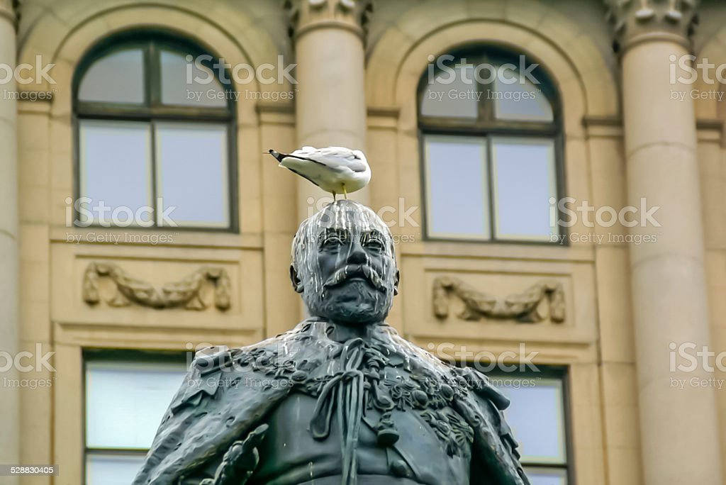 Pigeon standing on the Statue in Montreal,Canada stock photo