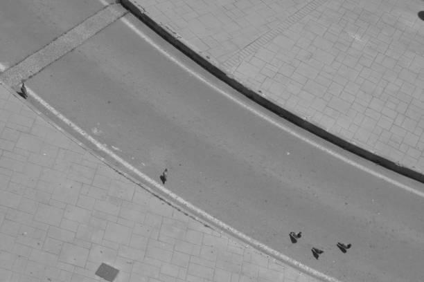 pigeons on a circular street stock photo