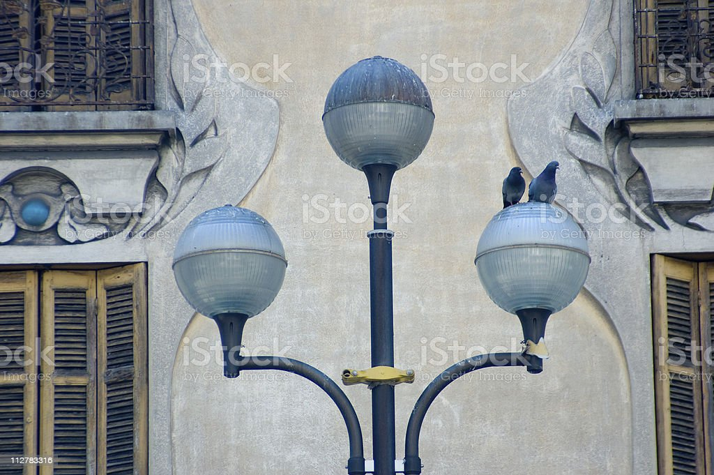 Pigeons on lamp post stock photo