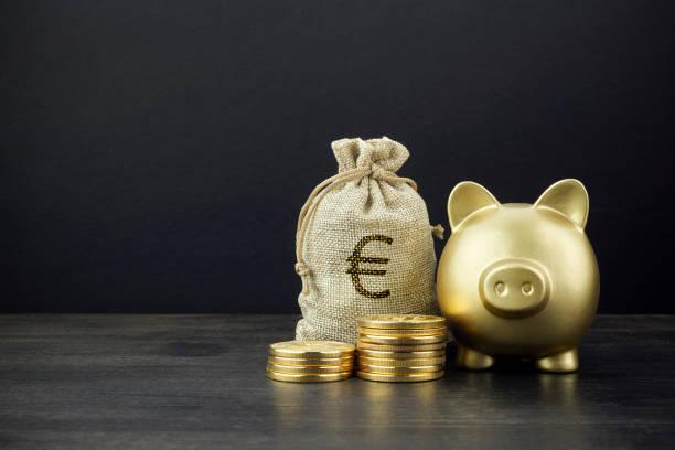 Piggy Bank und Geldbeutel mit Münzen auf dunklem Holzhintergrund – Foto