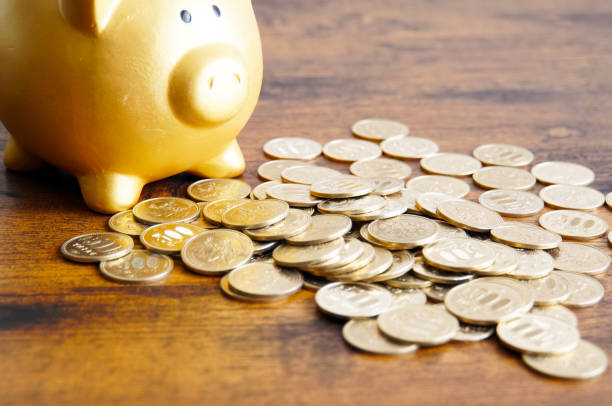Piggy Bank and money Piggy Bank and money miserly stock pictures, royalty-free photos & images