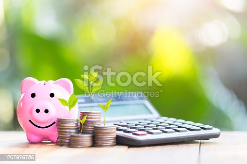 istock Piggy bank and The coin is placed on the side. Tree placed on coins. planning savings money of coins to buy a home concept for property, 1207976756