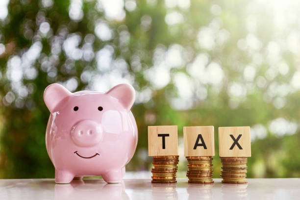 Piggy bank and wooden blocks with text TAX stock photo