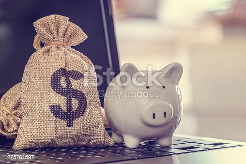 Online saving and internet or electronic banking, financial concept