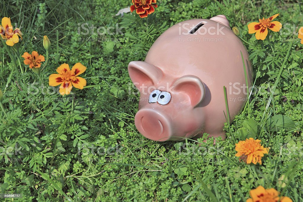 Piggy bank for our few savings royalty-free stock photo