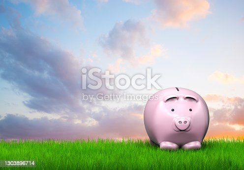 Piggy bank in green field and behind cloudy sky