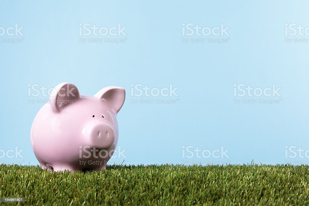 Piggy Bank in green meadow royalty-free stock photo