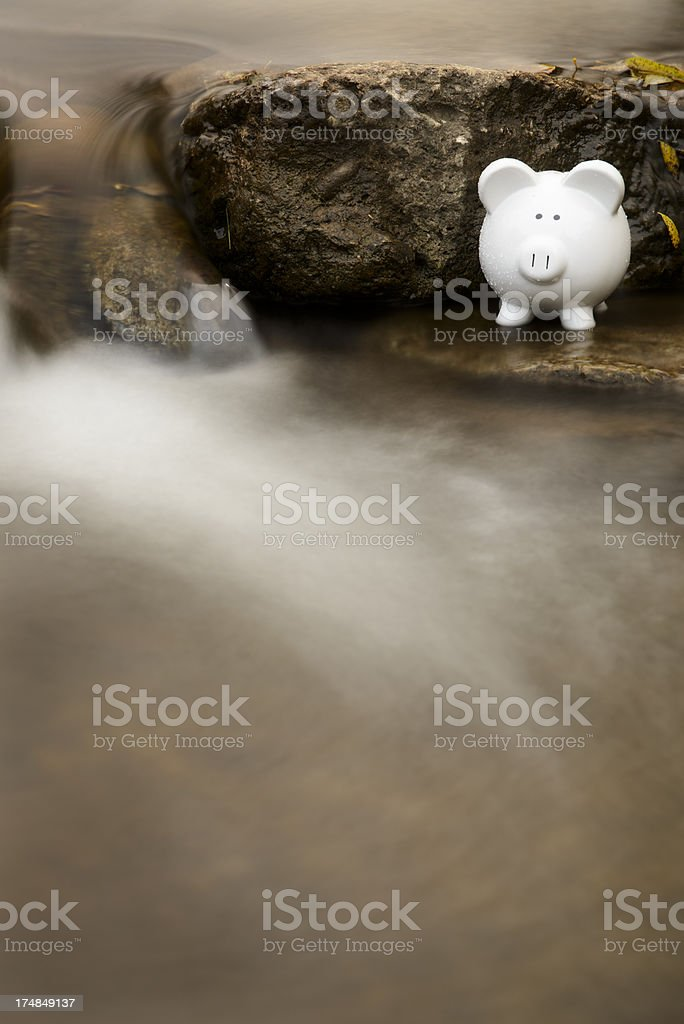 Piggy Bank in Stream royalty-free stock photo