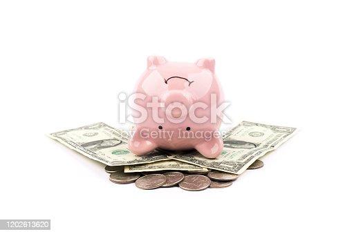 Piggy bank isolated dollar money concept for growth and success