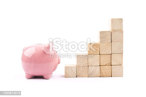 Piggy bank isolated Concept for growth and success