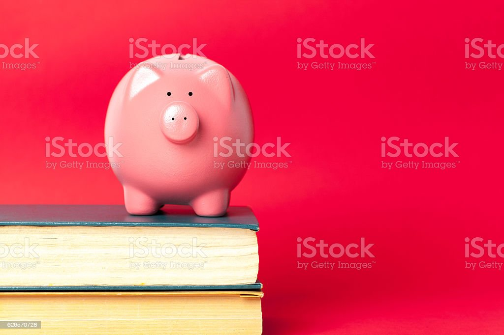 piggy bank on a stack of book stock photo