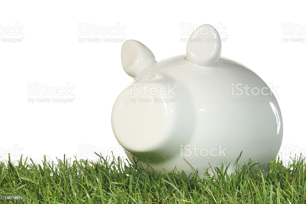 Piggy bank on grass. royalty-free stock photo