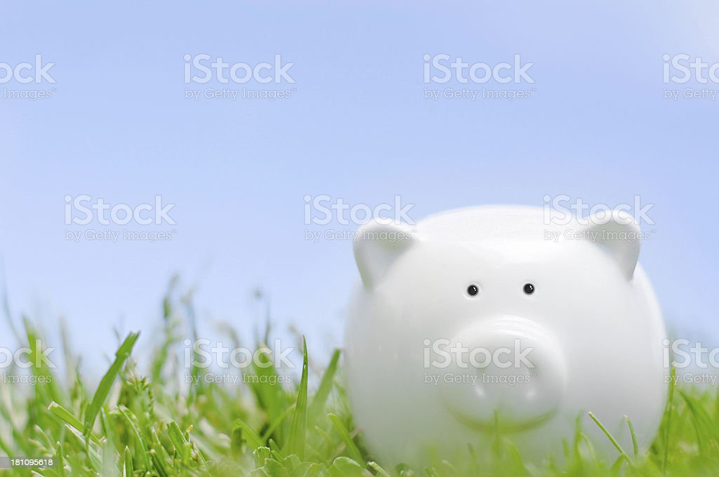 Piggy bank on grass royalty-free stock photo