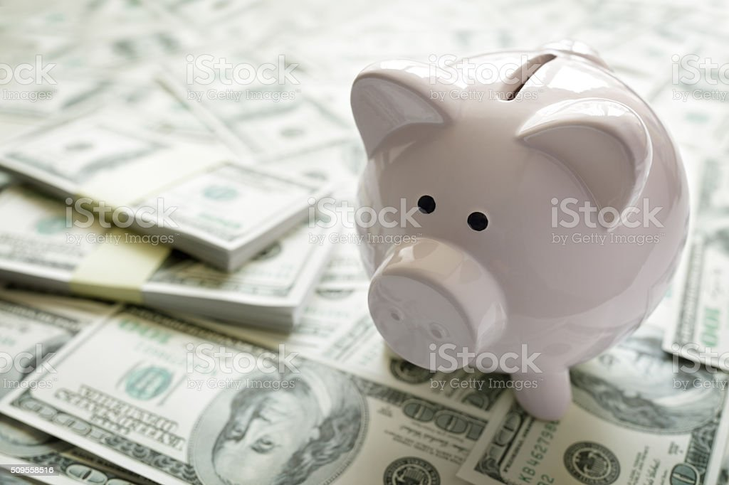 Piggy bank on money stock photo