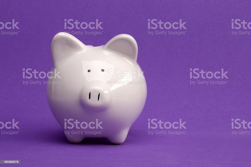 Sparschwein auf Lila – Foto