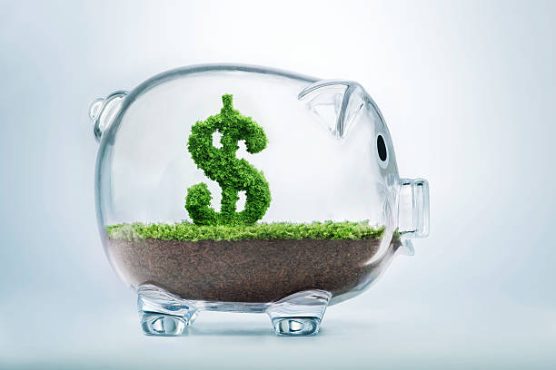 Piggy bank savings Piggy bank savings concept with grass growing in shape of US dollar allowance stock pictures, royalty-free photos & images