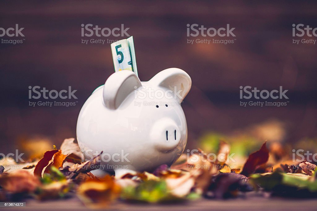 Piggy bank standing in fall leaves. Fall savings concept – Foto