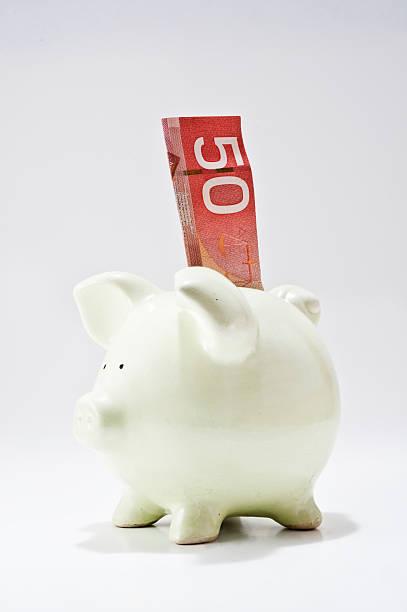 Piggy bank, with a 50 dollar bill