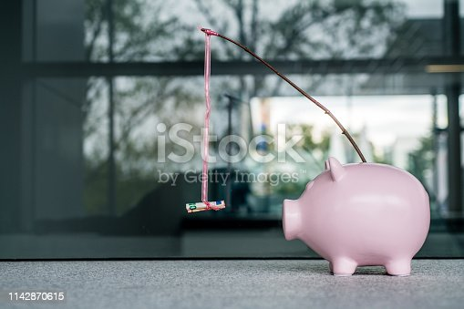 Piggy bank With a Money Carrot stick