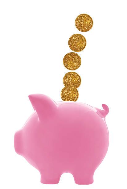 Piggy Bank with Australian Dollars stock photo