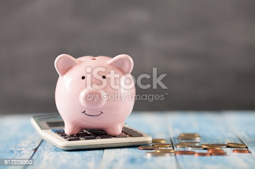 istock Piggy bank with calculator 917229350