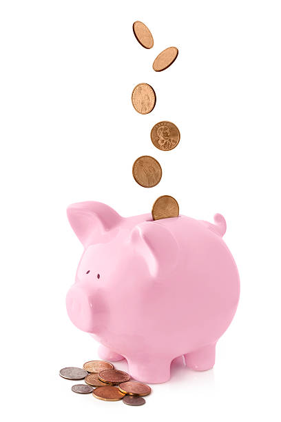 What Is Piggy Bank