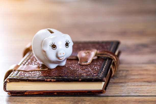 piggy bank with happy face on age book background stock photo