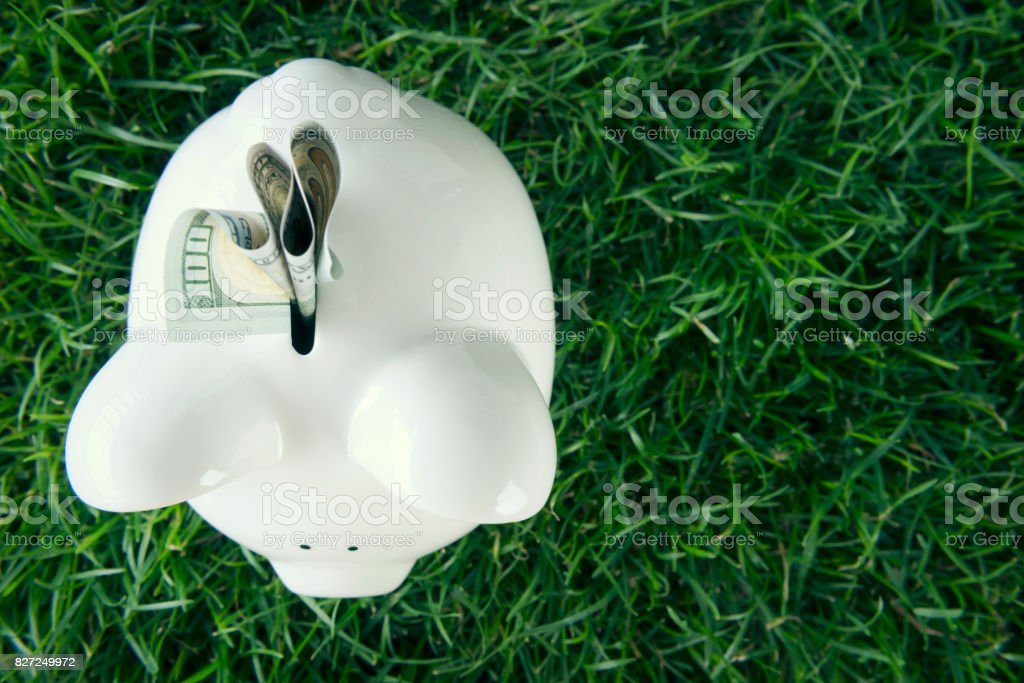 Piggy bank with US dollars stock photo