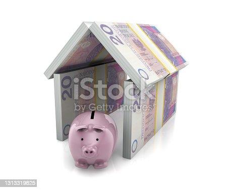 istock Piggy Bank with Zloty Money Insurance 1313319825