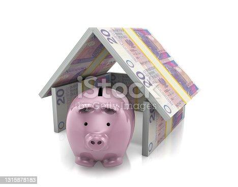 istock Piggy Bank with Zloty Money Insurance 1315878183