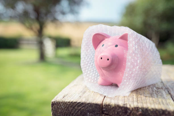 Piggy bank wrapped in bubble wrap, protecting your money Piggy bank wrapped in bubble wrap, protecting your savings and money defend stock pictures, royalty-free photos & images