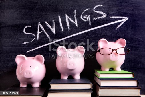 istock Piggy Banks with savings message 165051521