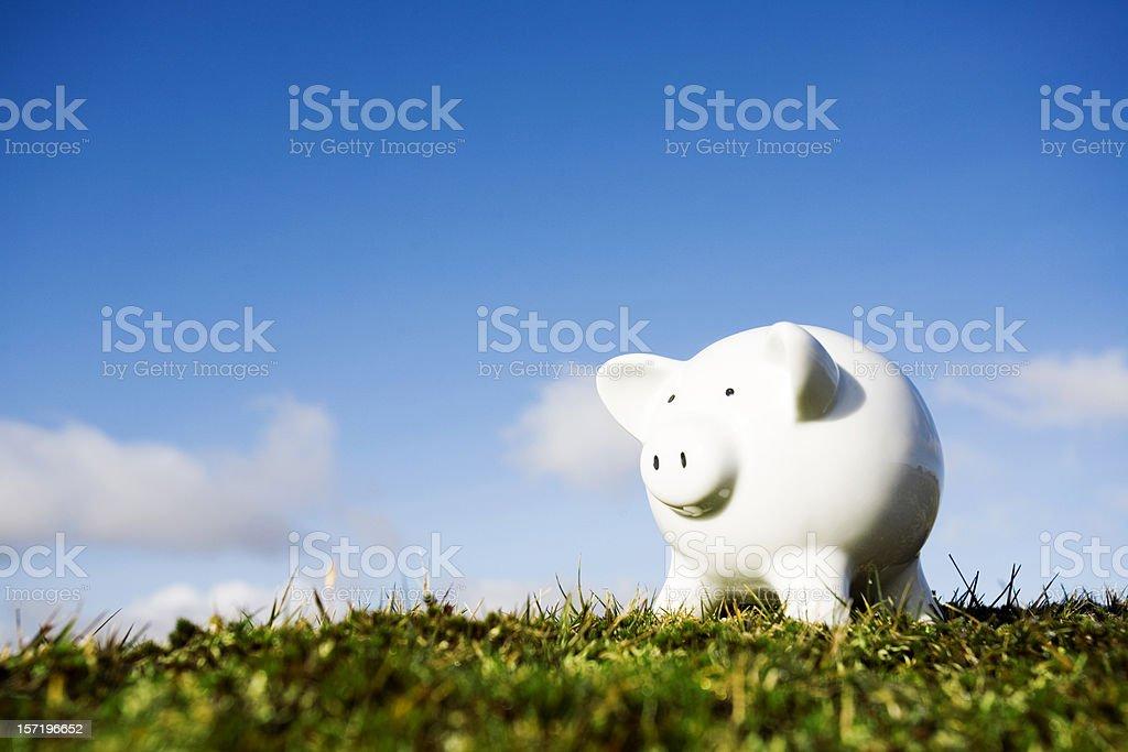 Piggy royalty-free stock photo