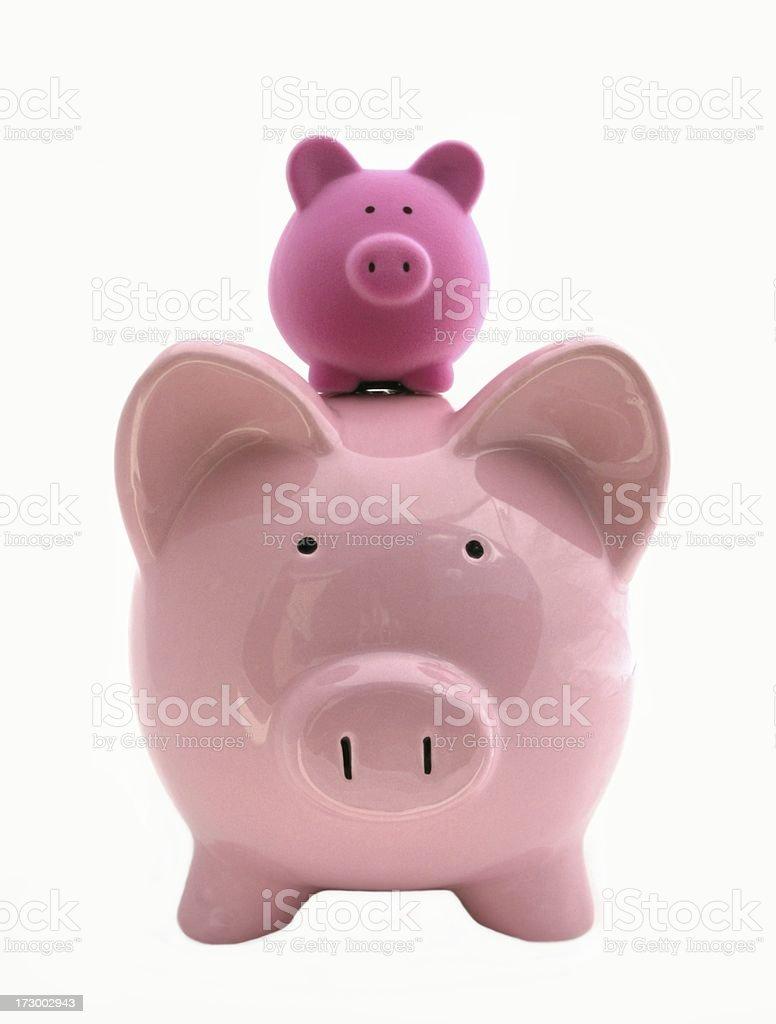 Piggyback stock photo