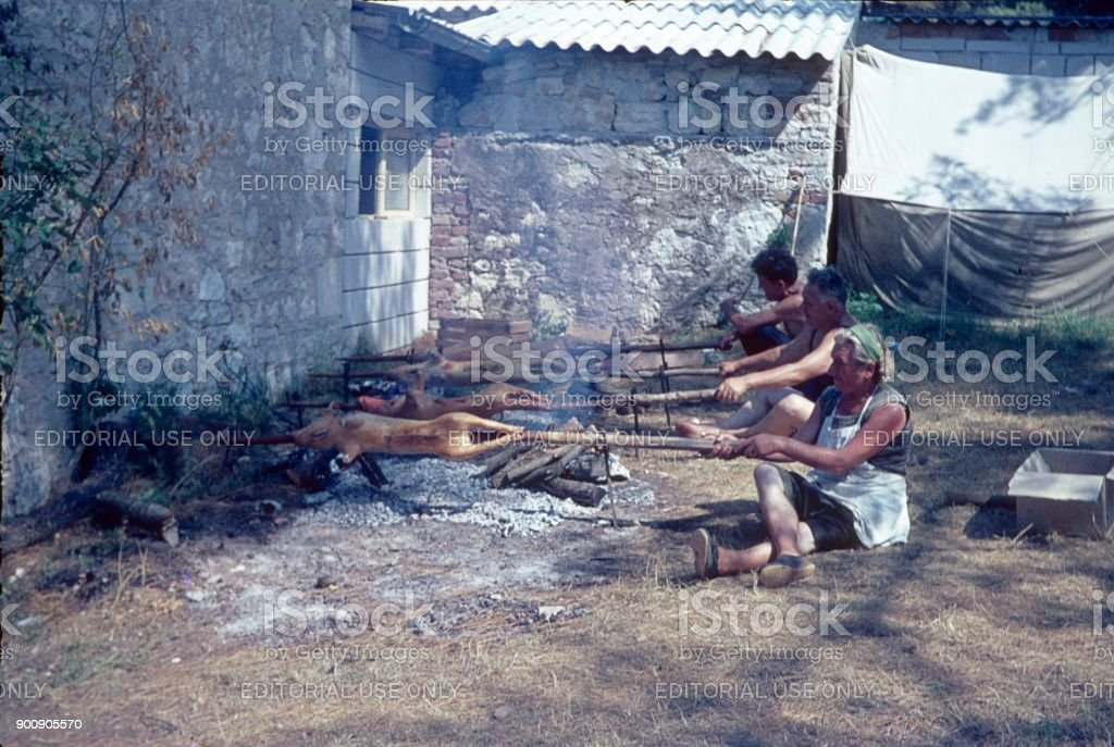Piglets on a spit stock photo
