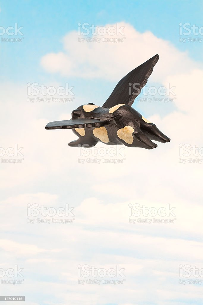 Pigs Can Fly stock photo